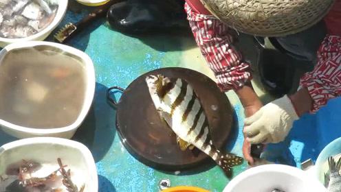 卖鱼大妈处理海鲜,经济价值非常高的三刀鱼!