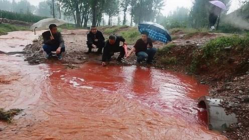 """广西一水塘每天准点""""出血"""",水中浮现巨大黑影,村民们人心惶惶"""