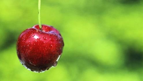 吃不起樱桃?营养师提醒:这3类人买得起樱桃,也要少吃