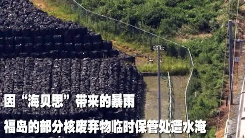 台风过后福岛55袋核污染物被水冲走:装有被污染的树叶和土壤