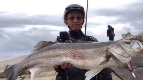 海钓矶钓,日本岛国太适合钓鱼