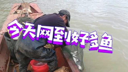 渔民今天的鱼有点多,不知道这种野生鱼你喜不喜欢吃