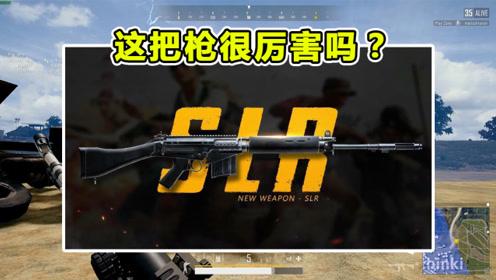 绝地求生:为什么国内职业选手都喜欢用SLR,这把枪很厉害吗?