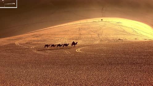 """假如我们把沙漠""""掏空""""?下面都有什么,看完后恍然大悟"""