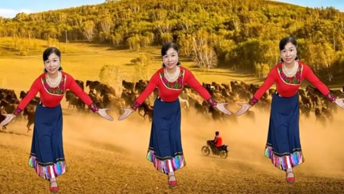 虹儿广场舞《新吉祥如意》欢快活泼藏族锅庄舞