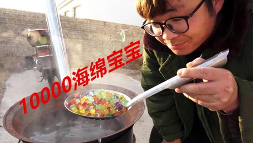奇葩测试把10000颗海绵宝宝放到大锅煮三个小时会怎样?最后太尴尬了