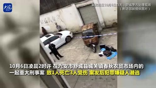 舒城1死3伤命案嫌疑人落网 记者回访案件发生地