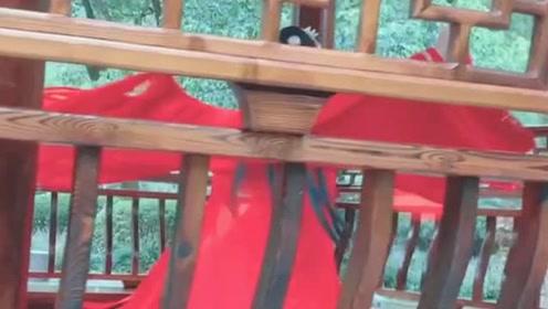 超美的一首古风《东宫初见》,红衣美女长亭里跳的淋漓尽致!