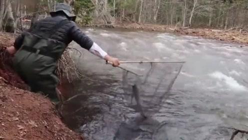 河边回水湾黑压压的全是鱼,一网下去就是惊喜