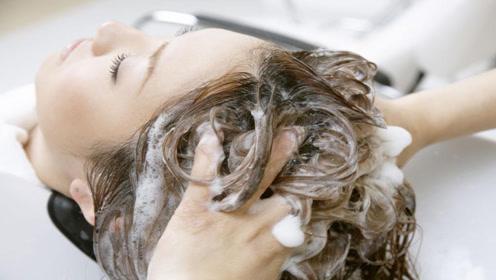 多久洗一次头发?这几个洗头误区,不允许你再犯了不是想洗就洗!