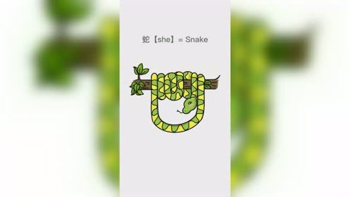 妈妈画的小蛇VS我画的小蛇