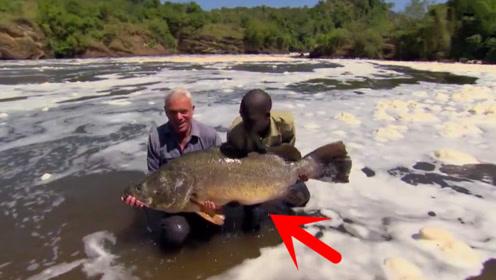 河水污染严重,大爷在此钓到超级大鱼,还能不能吃?
