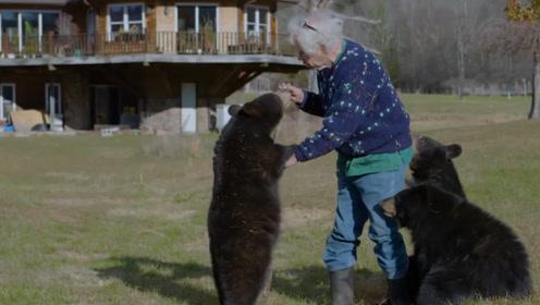 硬核!彪悍大爷养3只巨型黑熊当宠物,平时出门太霸气