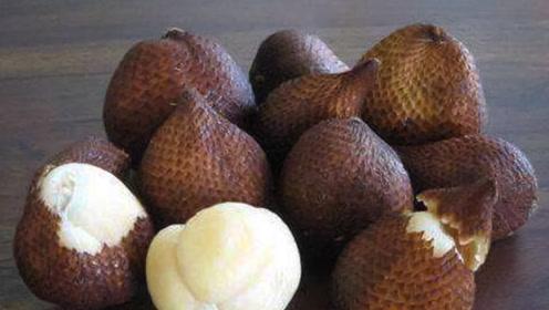 这种东南亚水果你吃过吗? 被称为记忆之果