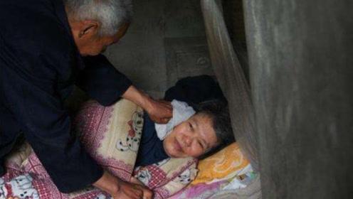 七旬老人为了老伴的身体,一件事做了8年!谁敢说老人不懂爱情?