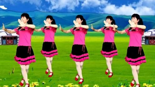 鸽子广场舞《敖包相会》简单易学32步教学一看就会