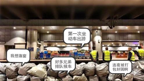 """双十一凌晨,一批神秘""""旅客""""抵达北京西站,还包了高铁车厢!"""