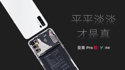 【享拆】坚果 Pro 3拆解:平平淡淡才是真