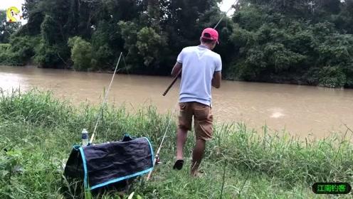 河边撒下钓竿已久钓竿终于拉动了,大哥快速跑去拉钓连续收获肥鱼