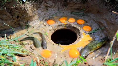 农村男子河边制造陷阱捕鱼,敲入生鸡蛋做诱饵,钻进了好多鱼啊