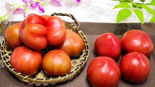 高血压患者越来越多,日常使用2种蔬果,呵护血管,血压慢慢降下来