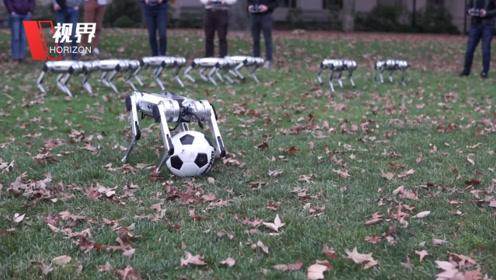 麻省理工公开最新机器狗 集体后空翻还能踢足球