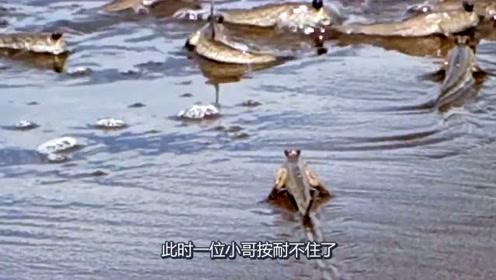 钓鱼:海边的沙滩上这么多跳跳鱼,这种鱼可以吃吗