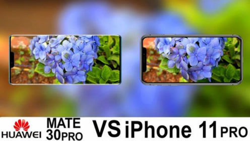 iPhone11和华为Mate30,进行拍照对比后,差距究竟有多大?