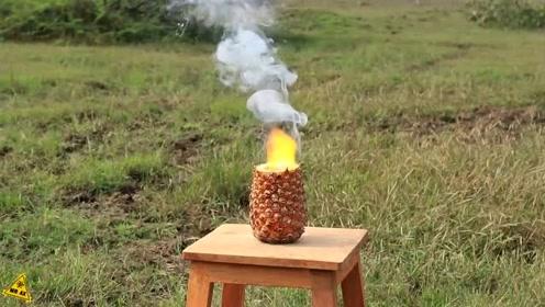 将曼妥思和可乐放在菠萝中,接下来的画面太炫酷了!