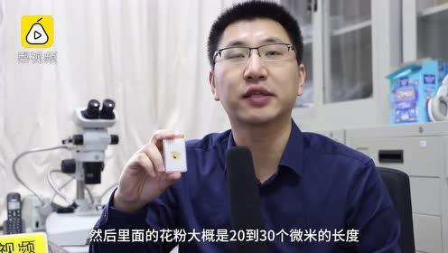 """中国学者发现亿年前琥珀花蚤:""""捡漏""""百元买琥珀,现已无价"""