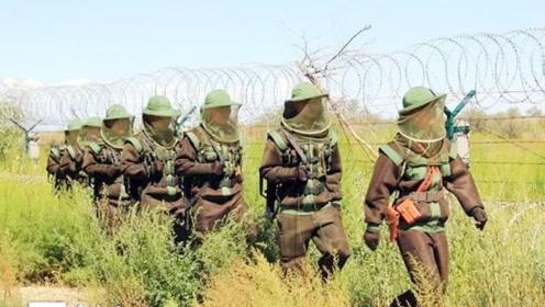 中国最危险的一段边境,7条军犬被活活咬死,士兵出门武装到牙齿