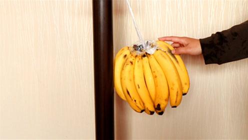 原来香蕉这么挂起来保存,放几个月都不发黑,早学早受益