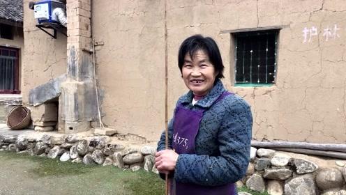 周至老县城大姐:种了三四十棵山茱萸,听听晒干的山茱萸卖多钱