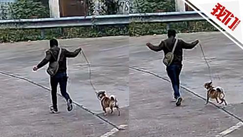 """男子牵着土狗走出""""六亲不认""""的步伐 背后原因竟与老虎有关"""