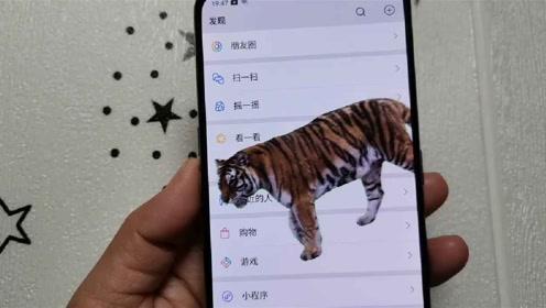 男友在手机里养了只老虎,一动他手机老虎就冲出来咆哮,太霸气了