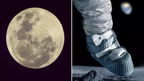如果殖民月球,房地产开发该选哪儿?专家的话让人不淡定