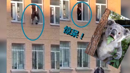 俄嫌疑人从警局二楼跳窗逃走 手上还铐着一组暖气片 警察都惊呆了