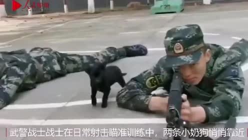 过分可爱预警!兵哥哥训练被小奶狗偷亲