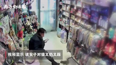 监拍吉林一女子在宠物店退猫遭拒后虐猫,店家:已和解,猫无碍