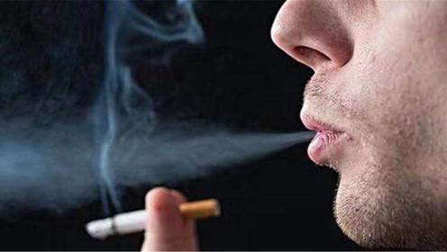 室内有烟味不用开窗,学会这个诀窍,烟味再多都不用怕,太实用了