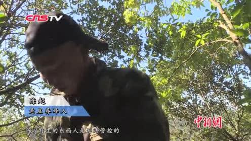 贵州一村民悬崖养蜂攀岩采蜜