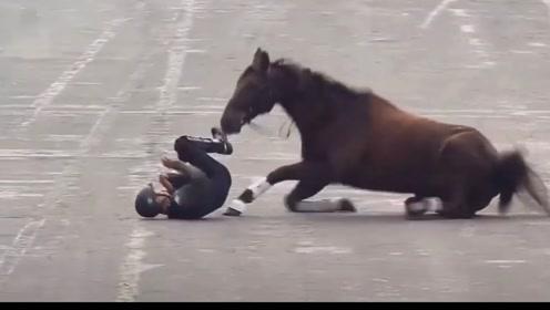 """墨西哥举办阅兵式 骑兵连人带马一同""""失足""""倒地"""