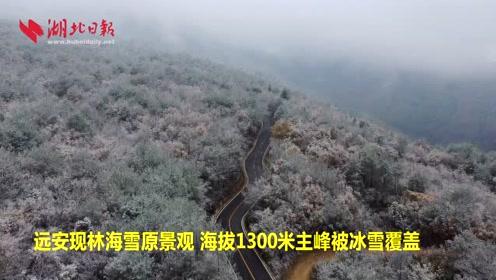 远安现林海雪原景观 海拔1300米主峰被冰雪覆盖