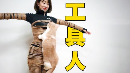 为取悦猫咪沦为工具人?猫:沙雕铲屎官是我快乐的源泉