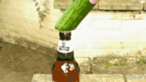 用黄瓜就能把啤酒盖打开?老外一本正经实验,网友:成功被骗了!