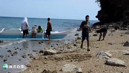 海边处理大鱿鱼,这是在给鱿鱼磨皮!