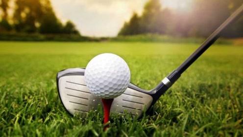 时速330㎞的高尔夫球撞击下会是什么状态,网友:这也太Q弹了吧!