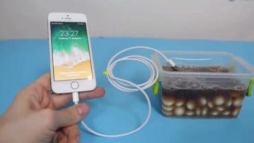 可乐加曼妥思竟能给手机充电?老外好奇测试,没想到还是个快充!