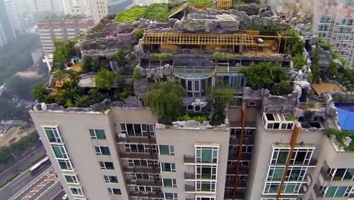 北京大爷因不满小区绿化将楼顶改成花园 刚建好就悲剧了
