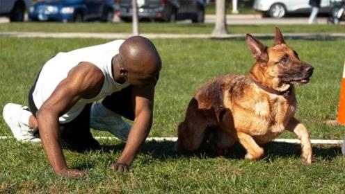人和狗进行短跑比赛,谁将会是王者?睁大眼睛瞧仔细了